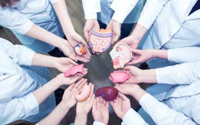 Proposition de loi : Don volontaire d'organes et don du sang à 15 ans.