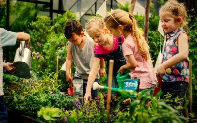 Proposition de loi : Faire de l'école un modèle écologique